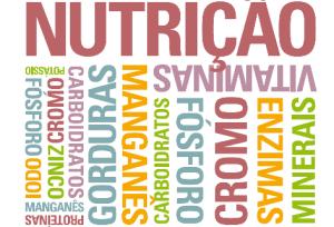 nutrição-funcional-005