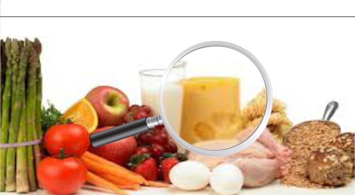 Auditoria Nutricional - Controle Higiênico Sanitário