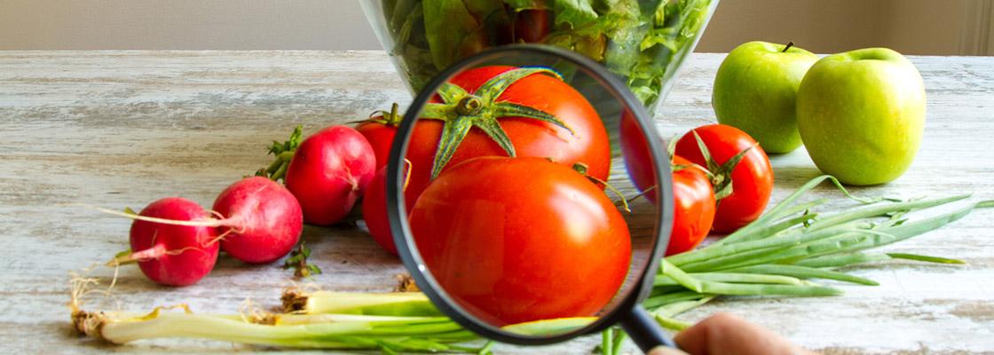 Diferença entre segurança alimentar e segurança de alimentos