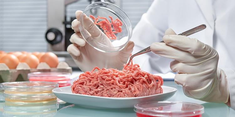Conheça a história da segurança dos alimentos