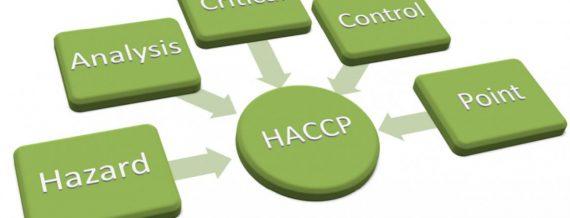 certificação HACCP