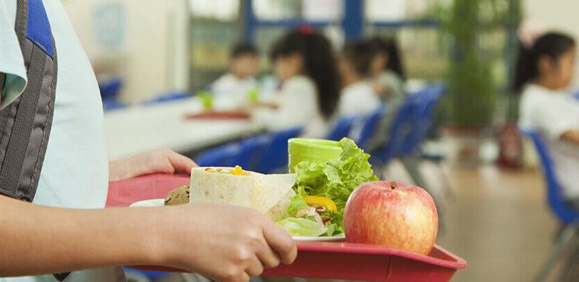 Dinâmicas de educação nutricional para escolas